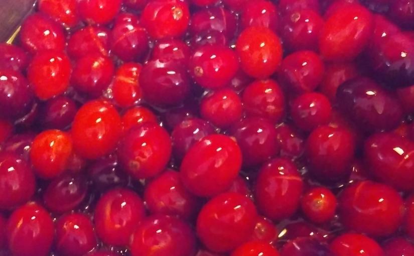 Simply Delicious CranberrySauce
